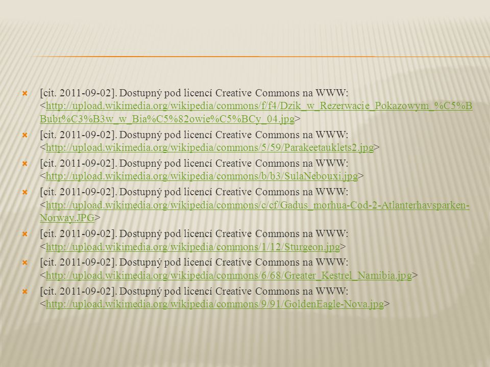 [cit. 2011-09-02]. Dostupný pod licencí Creative Commons na WWW: <http://upload.wikimedia.org/wikipedia/commons/f/f4/Dzik_w_Rezerwacie_Pokazowym_%C5%BBubr%C3%B3w_w_Bia%C5%82owie%C5%BCy_04.jpg>